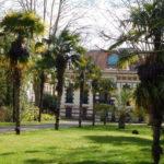 jardin du musée Georges-Labit