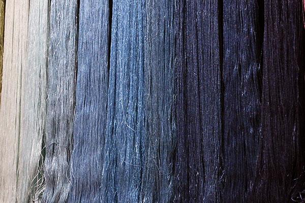 Le pastel et l'indigo, de l'Occitanie au Japon