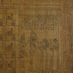 Papyrus © D. Molinier