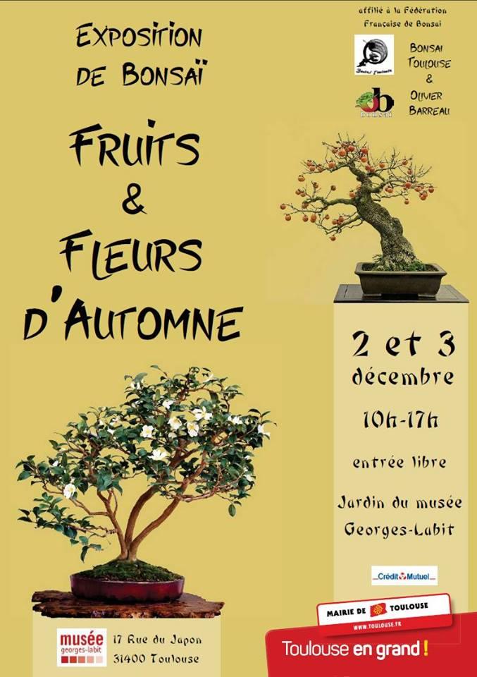 Fruits et fleurs d'automne - Bonsaï
