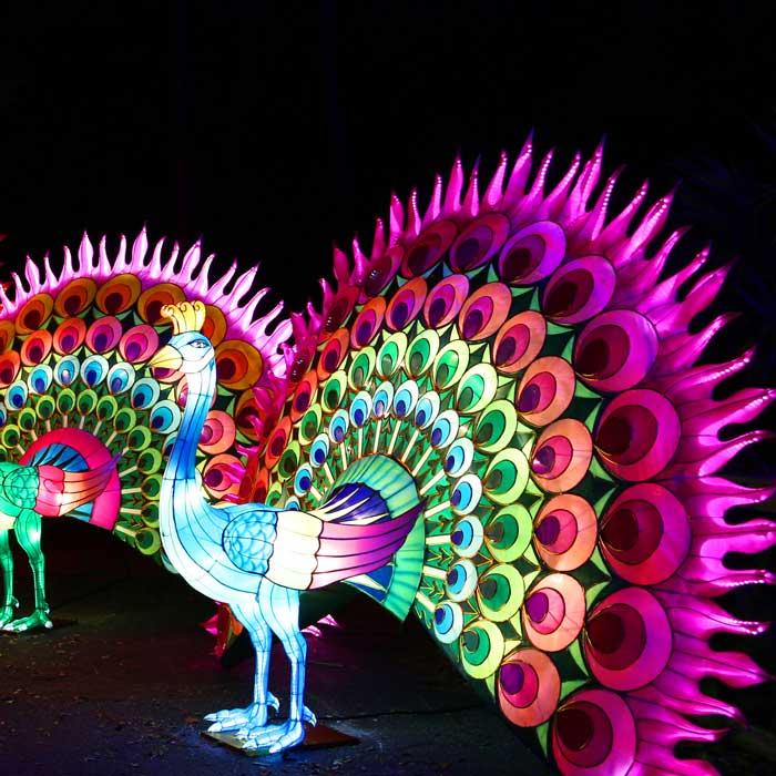 Célébration du nouvel an chinois au Festival des lanternes de Gaillac