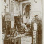 Ancienne vue de l'intérieur du musée du vivant de Georges Labit. XIXe siècle