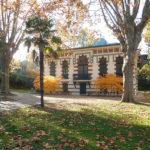 Jardin du musée Georges-Labit, matin d'automne 2019